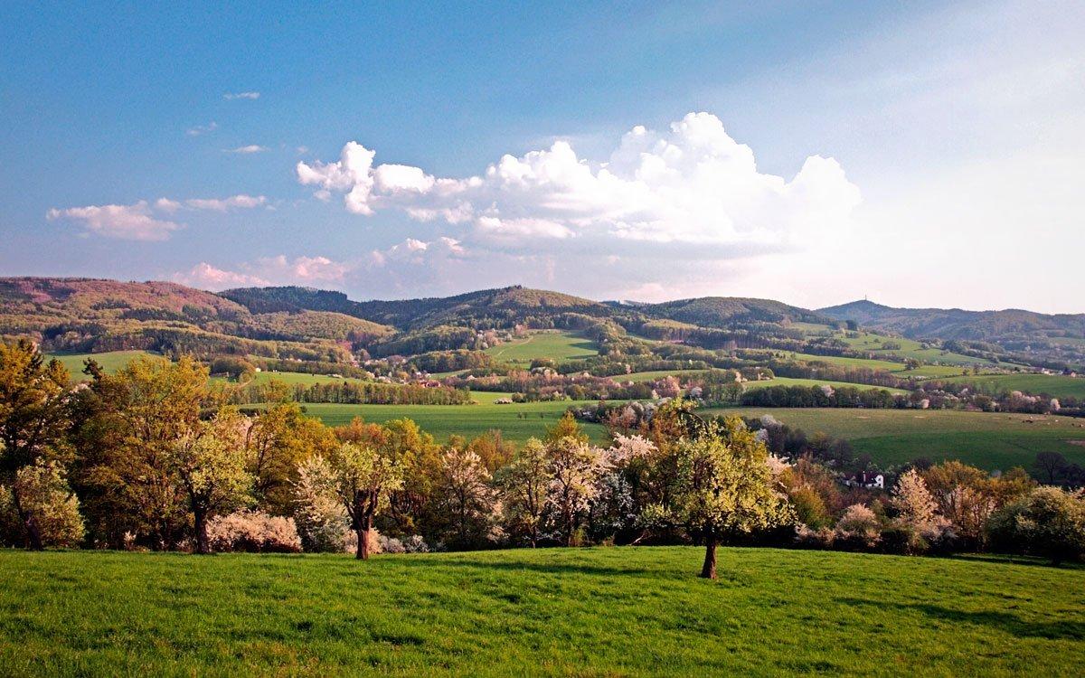 Jižně od Vizovic se rozkládá krajina Vizovických vrchů. Lehce se vlnící horizonty, plné luk a ovocných stromů, jsou rájem turistů...i pěstitelů těch nejlahodnějších trnek. | © Dreamstime