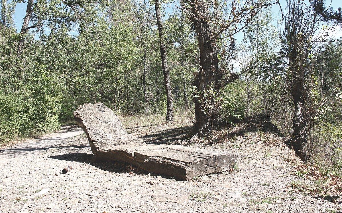 Kdysi dávno tu bylo mořské dno a celé Prokopské údolí a nedaleké Barrandovské skály jsou významnou geologickou lokalitou, kde dodnes můžete najít vzácné zkameněliny. Vede tudy několik cest a v okolí je hodně míst, kde se dá v klidu natáhnout a relaxovat. | © Appelpay