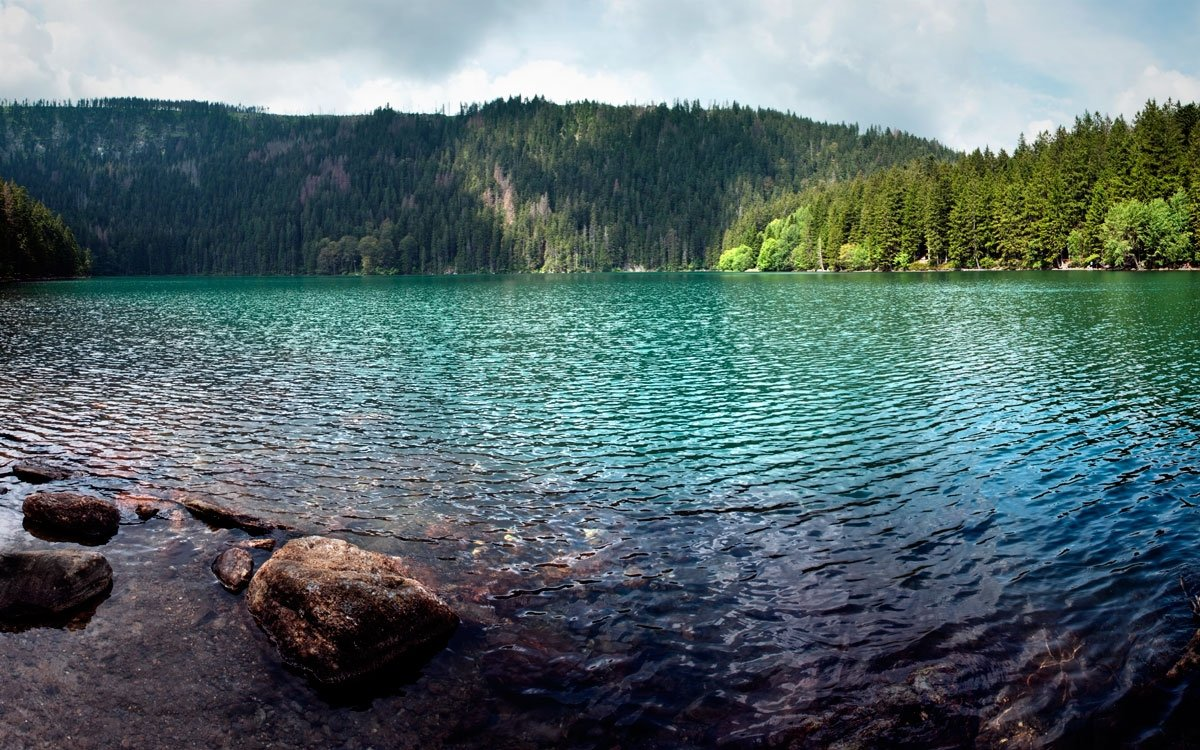 Po roce 1950 bylo Černé jezero zahrnuto do střeženého pohraničního pásma a veřejnosti nepřístupné, zhruba po deseti letech pak bylo pod dozorem pohraniční stráže opět zpřístupněno a sezonně byla zajišťována i autobusová doprava. Provozování linky bylo ale ukončeno po roce 1989 v souvislosti se zvýšením režimu ochrany zdejší přírody. | © Dreamstime