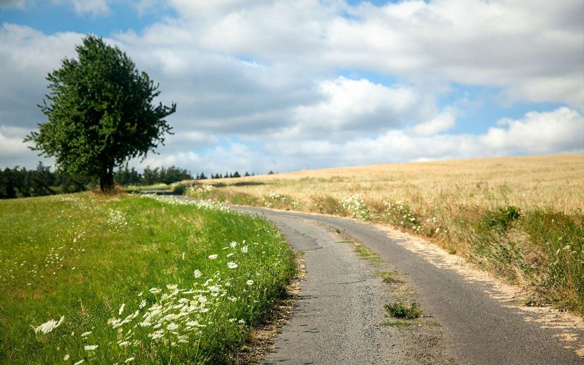 Trasa Josefa Suka vedoucí po červené značce do Sedlčan je plná krásných výhledů do okolní krajiny i romantických zákoutí. | © Eva Kořínková