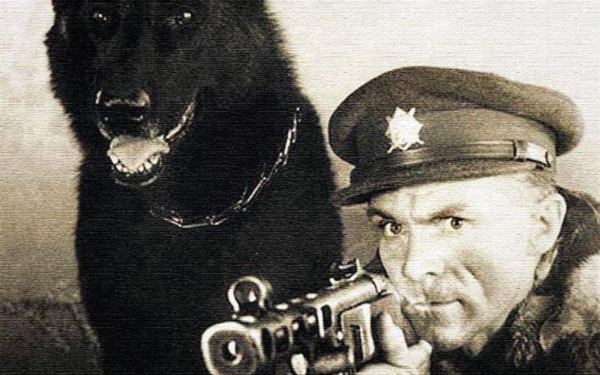 Až dlouho po natočení Kachyňova filmu Král Šumavy byla odhalena totožnost hlavního hrdiny. Byl jím Josef Hasil, původně příslušník SNB, který po převratu v roce 1948 začal režim podvracet, stal se tajným americkým agentem a převaděčství se věnoval až do roku 1953, kdy se hranice našeho státu definitivně uzavřely.