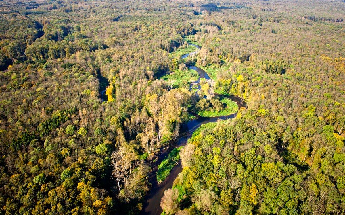 V okolí Litovle se rozkládá chráněná krajinná oblast Litovelské Pomoraví – území neregulovaného horního toku řeky Moravy mezi Olomoucí, Litovlí a Mohelnicí. Komplex lužních lesů a mokřadních luk s tůněmi je rájem vodáků a především cyklistů, pro které je tu připraveno mnoho značených cyklotras v nenáročném terénu. | z archivu Olomouckého kraje