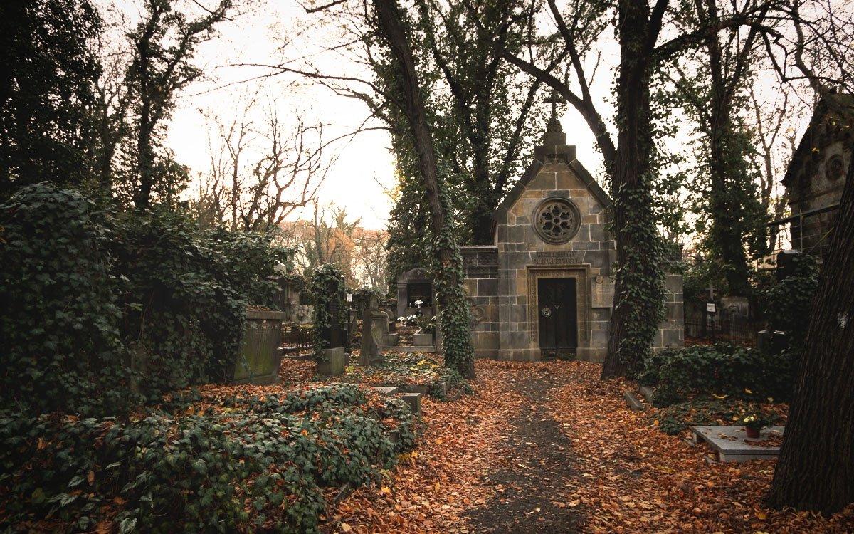 Olšanské hřbitovy jsou až překvapivě tichým místem téměř v samotném centru metropole. Je to klidné a malebné prostranství, ideální k podzimním procházkám, které vypráví příběhy z české historie. Jsou zde pohřbeni někteří známí obyvatelé Prahy, kromě Franze Kafky zde své hroby mají čeští i zahraniční hrdinové z obou světových válek, významní čeští básníci, ale také například Jan Palach. | © sius
