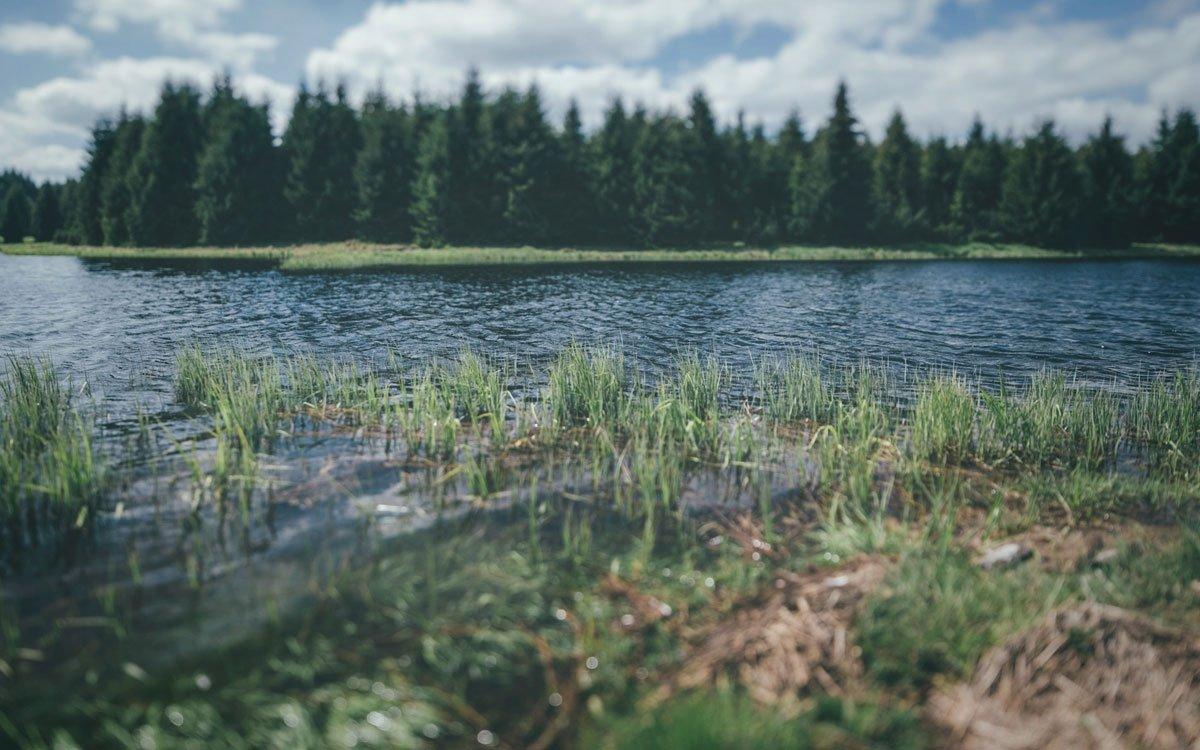 Vodní nádrž o rozloze 153 ha mohla vzniknout právě díky Teplickému Semmeringu, kterým se na přehradu dopravoval stavební materiál. | © Petr Hricko
