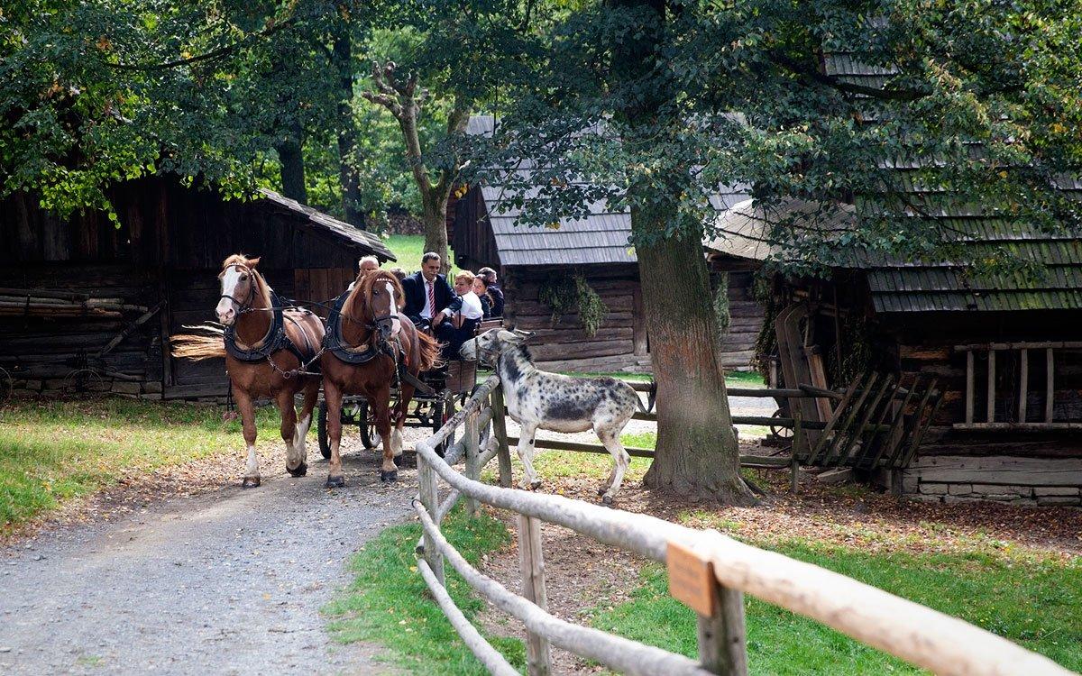 Chcete-li se blíže seznámit se životem v Beskydech, určitě navštivte Valašské muzeum v přírodě v Rožnově pod Radhoštěm. Když se totiž v Česku řekne skanzen, mnozí si představí právě tento. Je největším a nejstarším skanzenem ve střední Evropě. Byl založen již v roce 1925 a v jeho třech expozicích – Dřevěném městečku, Valašské dědině a Mlýnské dolině – je rozmístěno téměř sto památkových objektů. | © Eva Kořínková