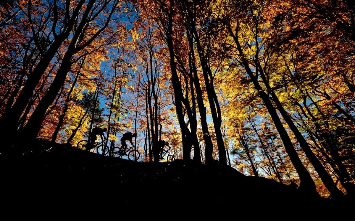 Pulčínské skály jsou nejen největším skalním městem v moravských Karpatech, ale také kolébkou trampingu. Co je pro Čechy Sázava, to jsou pro Valachy Pulčínské skály. Jsou skvělým místem pro pěší turisty i horolezce a na své si rozhodně přijdou také cyklisté. | © Petr Slavík, www.trail-busters.com