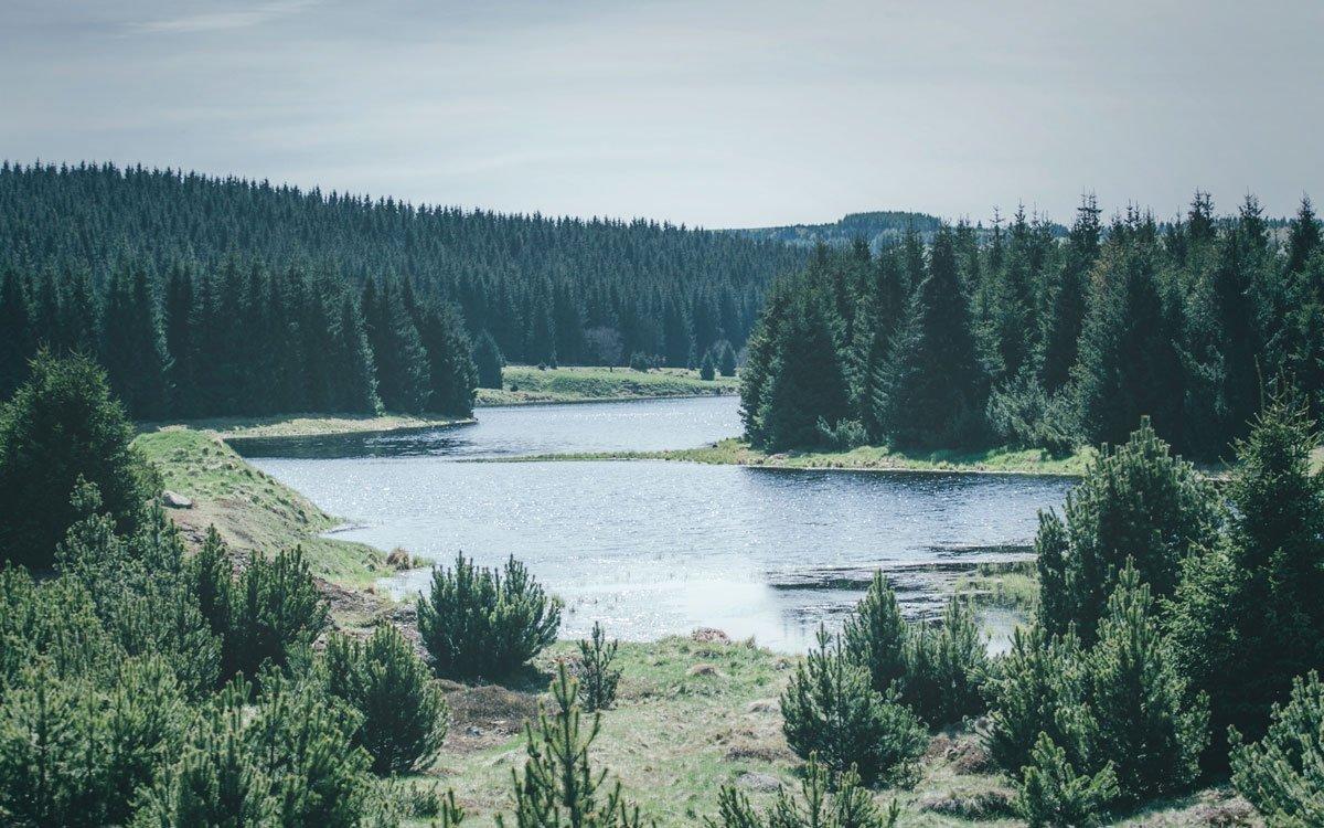 V letech 1951–1964 byla v Krušných horách vystavěna v Česku zcela unikátní pilířová vodní nádrž na pitnou vodu Fláje. | © Petr Hricko