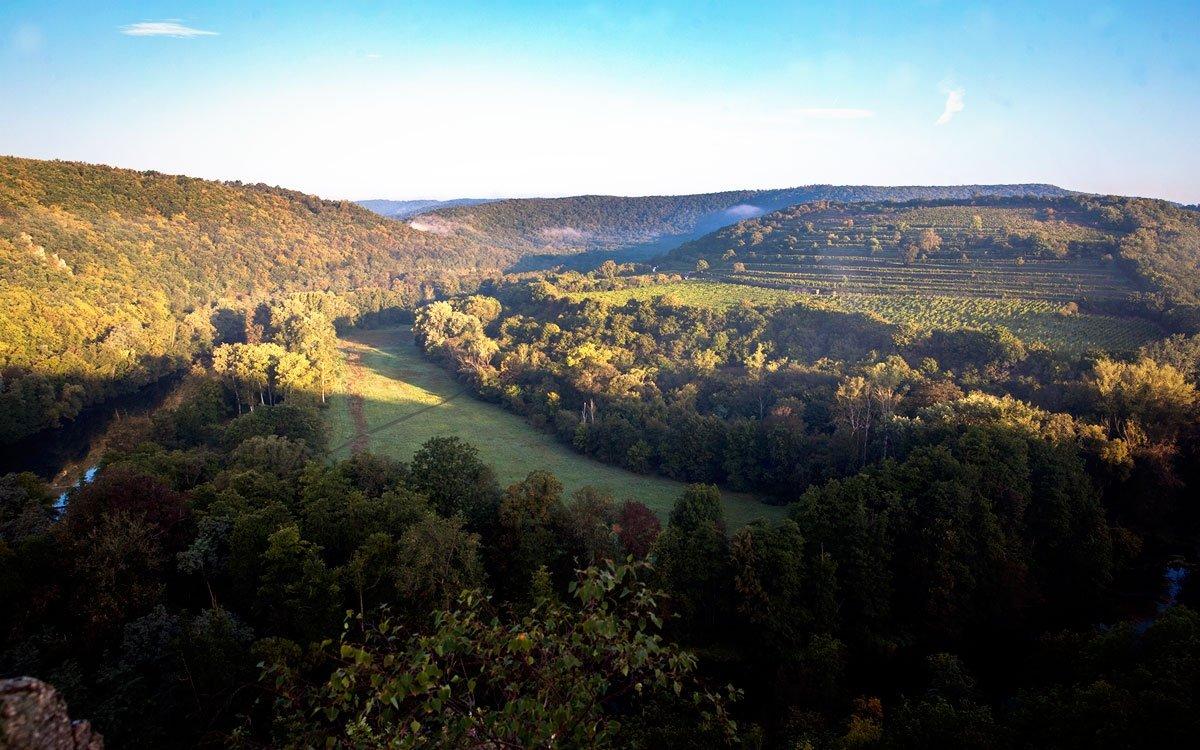 Uprostřed národního parku Podyjí, v oblasti nazývané Devět mlýnů, leží přímo na dálkové cyklotrase Greenway Praha–Vídeň výjimečná viniční trať Šobes. | © Eva Kořínková