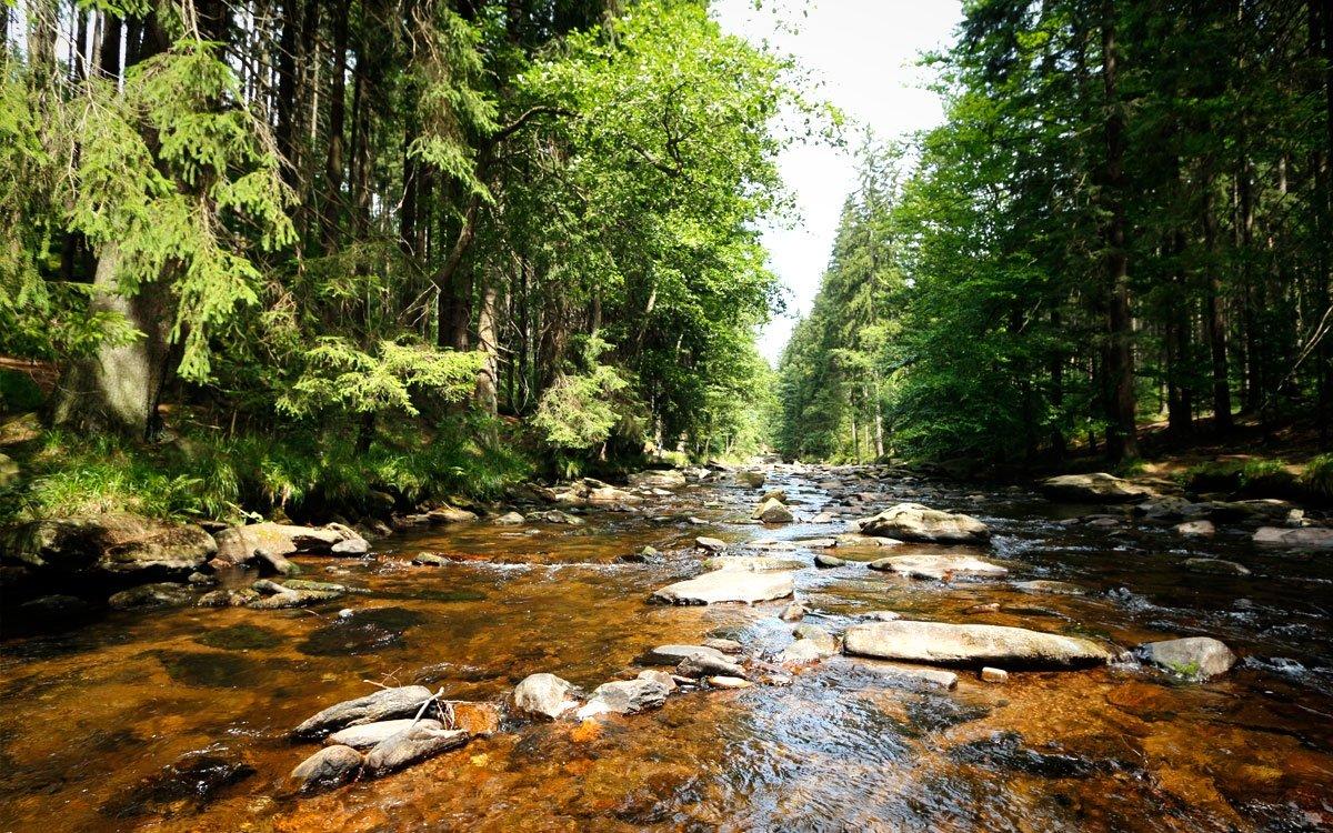 V místech, která nesou poetický název Zemská brána, protíná řeka Divoká Orlice hřbet Orlických hor a vytvořila zde romantické údolí vklíněné mezi skály, odkud se vydává dál do českého vnitrozemí. | © sius