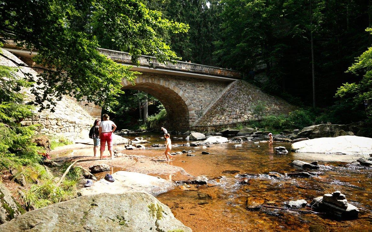 U kamenného mostu přes řeku, na cestě z Českých Petrovic doBartošovic v Orlických horách, začíná naučnástezka Zemská brána. | © sius