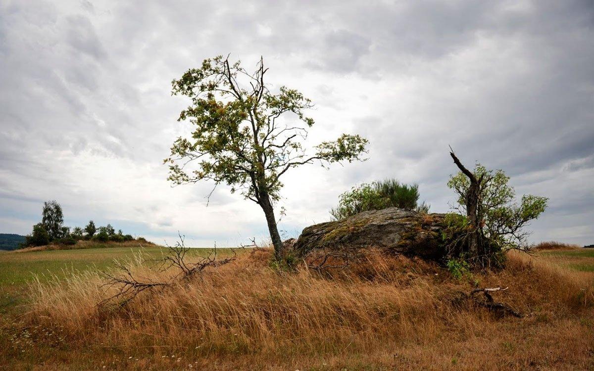 Podnebí je tu tak trošku drsnější než jinde v okolí a jaro nastupuje o něco později. Tento malý handicap je však nahrazen přenádhernou, čistou krajinou, kde se v létě o houby i o borůvky přímo zakopává. | © René Volfík